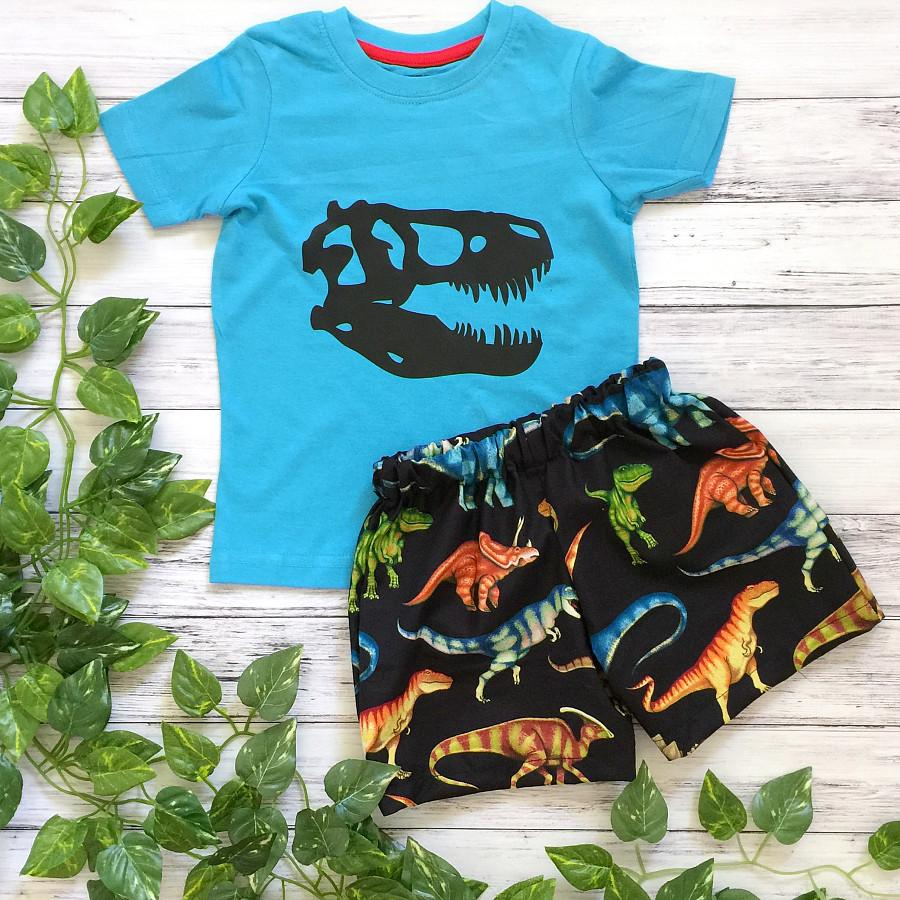 Dinosaur Boys Shorts & Tshirt Set