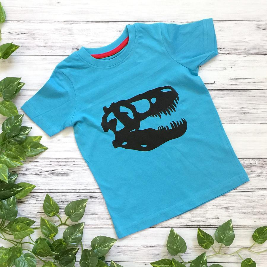 Roar! Dinosaur Boys T-Shirt