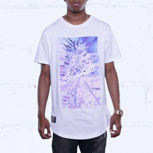 Sensi Photo Curved Hem Tee White