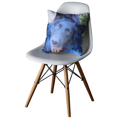 Photo Cushion - Pet Lovers!