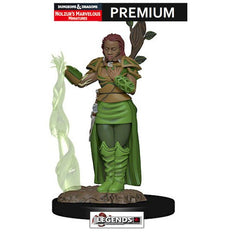 DUNGEONS & DRAGONS -  Premium Painted Figure:  Female Human Druid  #WZK93009