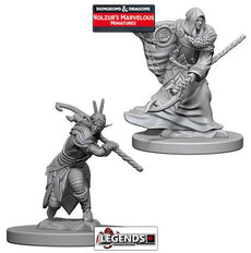 DUNGEONS & DRAGONS NOLZUR'S MARVELOUS UNPAINTED MINIATURES:  Elf Male Druid #WZK72641