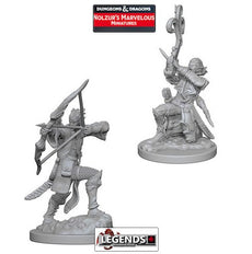 DUNGEONS & DRAGONS NOLZUR'S MARVELOUS UNPAINTED MINIATURES:  Elf Male Bard