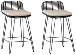 Bani Counterstool (Set of 2)