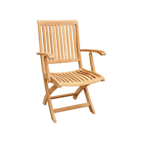 Judy Folding Arm Chair - Old Bones Furniture Company