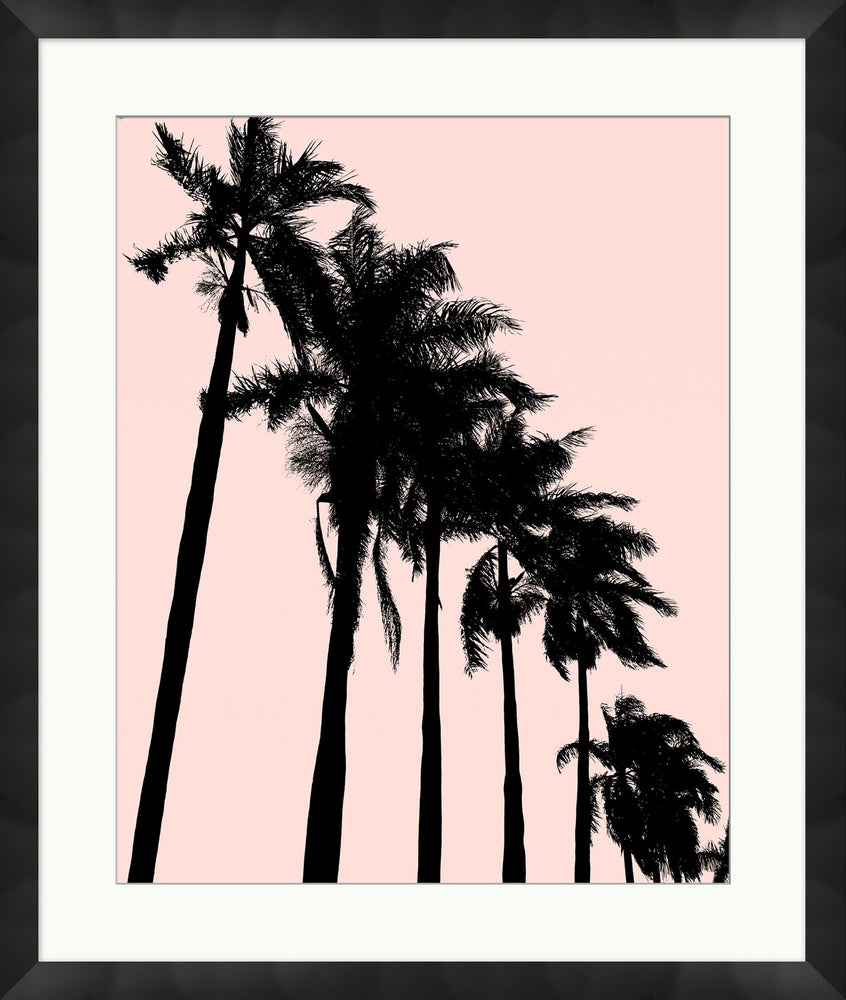 Christopher Kennedy - Summer Palm 1