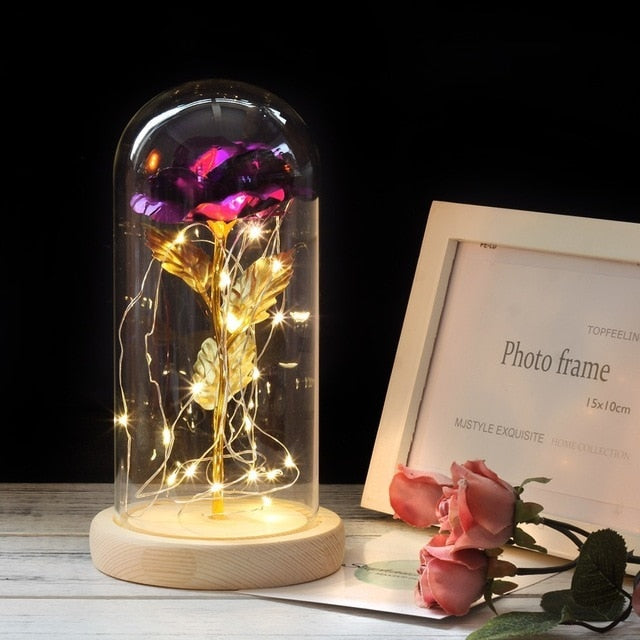 Enchanted Rose Light - Special Edition