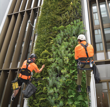 Height Services in Auckland, Hamilton, Tauranga, and Wellington. Rope Access. Swinging Stage Hire. Building Wash. Fall Arrest Systems.