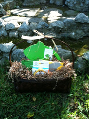 Going, Going Green! Gift Basket
