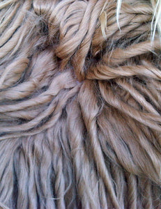 Suri Alpaca fleece close-up [Image credit: bas-uk.com]
