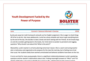 Practice Brief: Youth Development Fueled by the Power of Purpose (downloadable PDF)