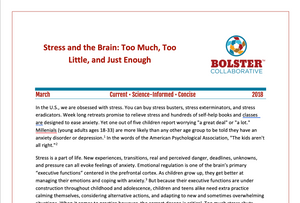 Practice Brief: Stress and the Brain: Too Much, Too Little, and Just Enough (downloadable PDF)