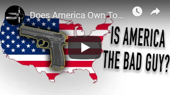 Does America Own Too Many Guns?
