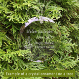 Design Your Own Crystal Ornament