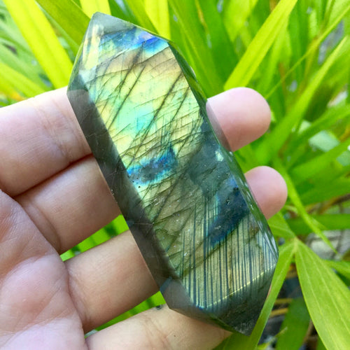 Labradorite Double Term