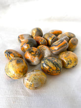 Load image into Gallery viewer, Bumblebee Jasper Large Tumble Stones