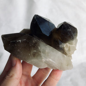 Record Keeper Smoky Quartz Cluster