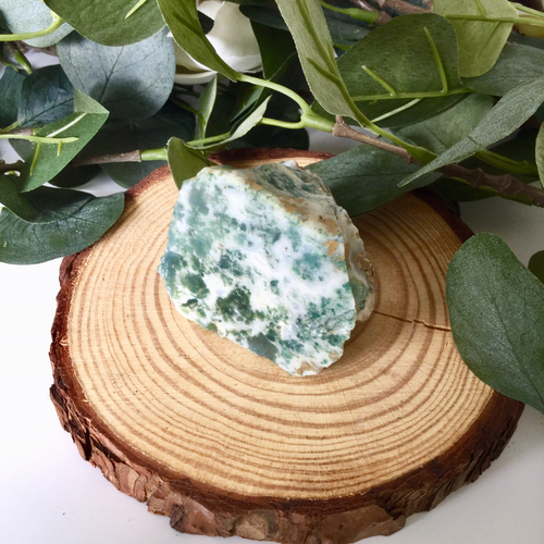 Tree Agate Half Polished