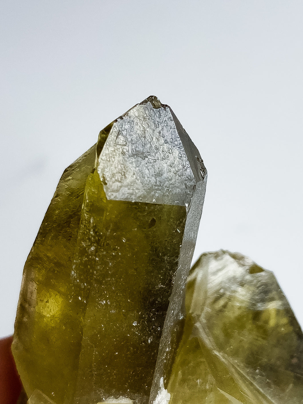 Master Record Keeper Phantom Smoky Quartz Cluster