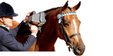 Thumper Equine Pro Professional Massager