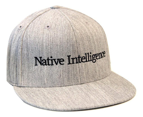 Native Intelligence Logo Baseball Caps