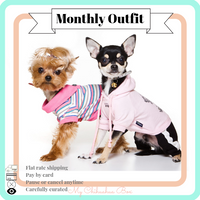 Monthly Outfit for Small Dogs