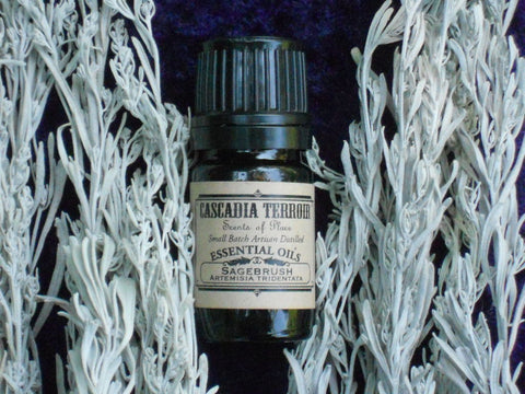 Sagebrush Essential Oil (Artimisa Tridentata)