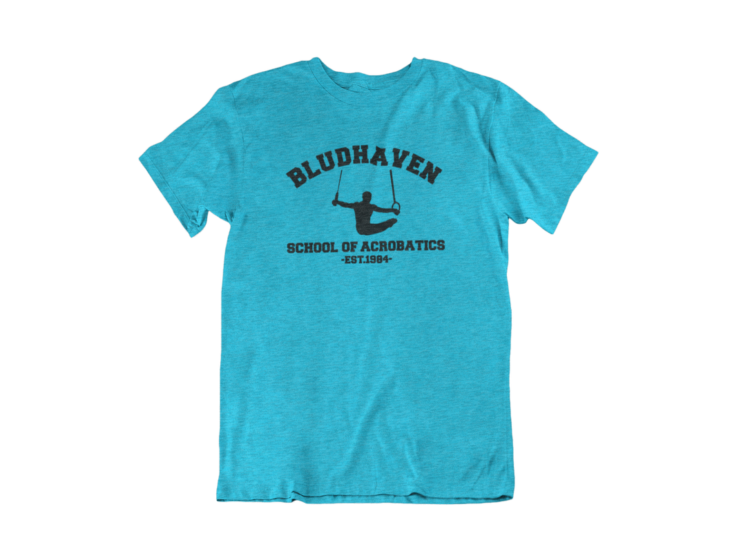 Nightwing - Bludhaven School of Acrobatics - Unisex short sleeve T-Shirt