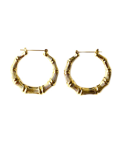 Dana Hoop Earrings