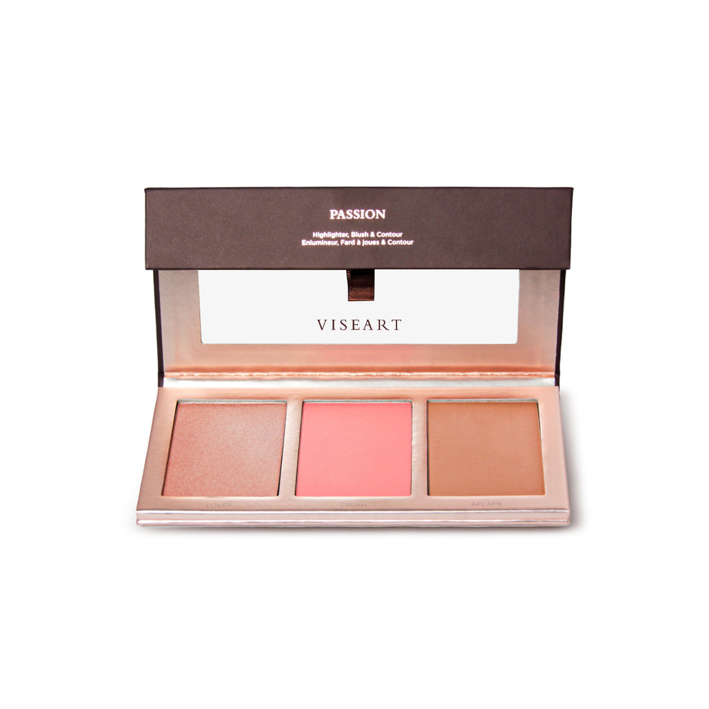 VISEART Highlighter, blush & contour Passion