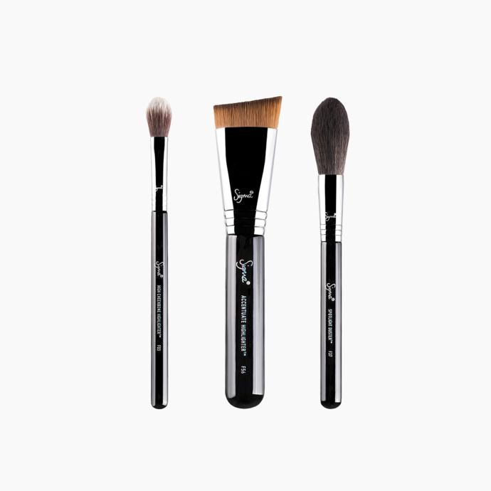 Sigma Highlighter Expert Brush Set