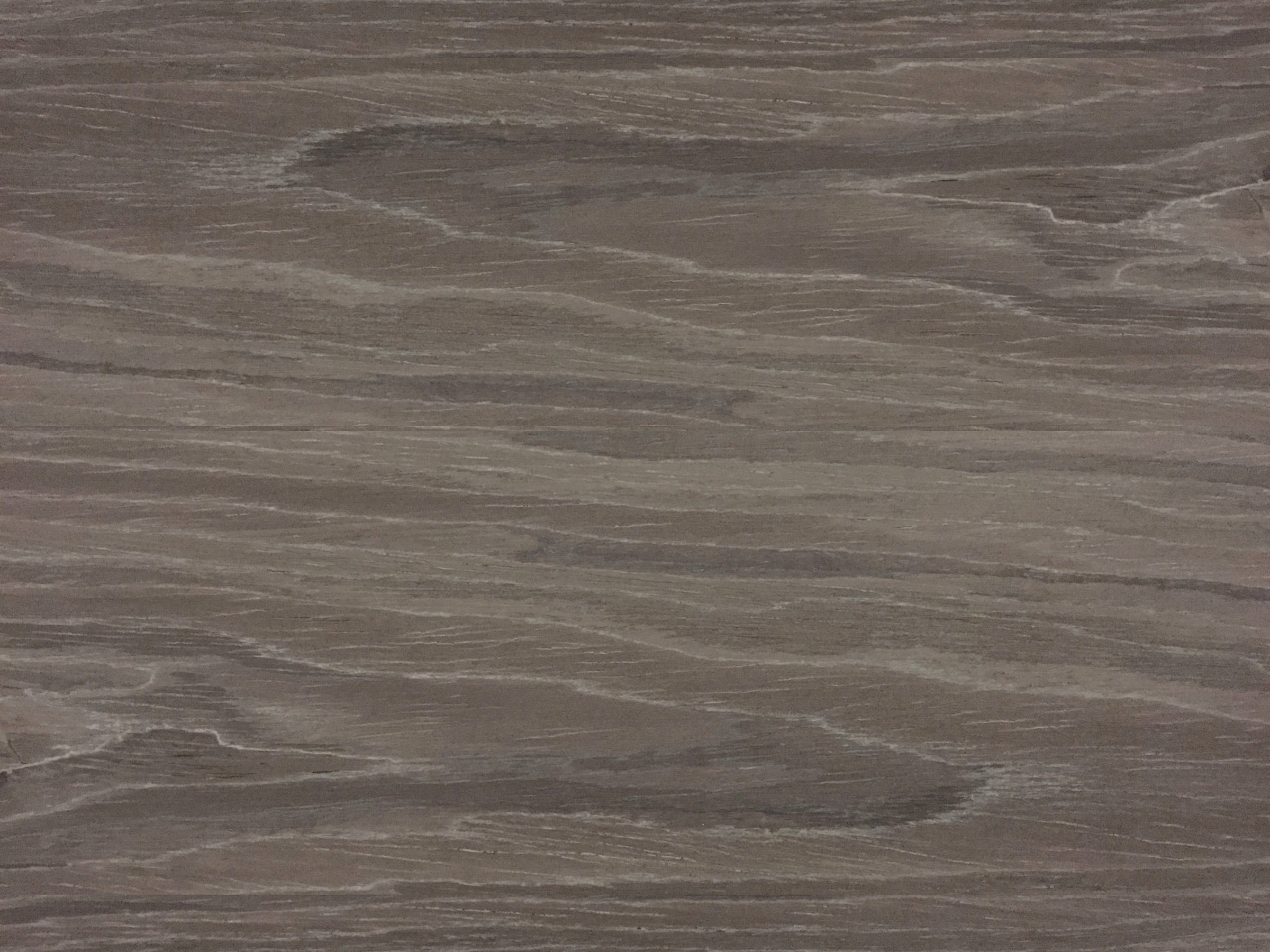 gray oak sample texture