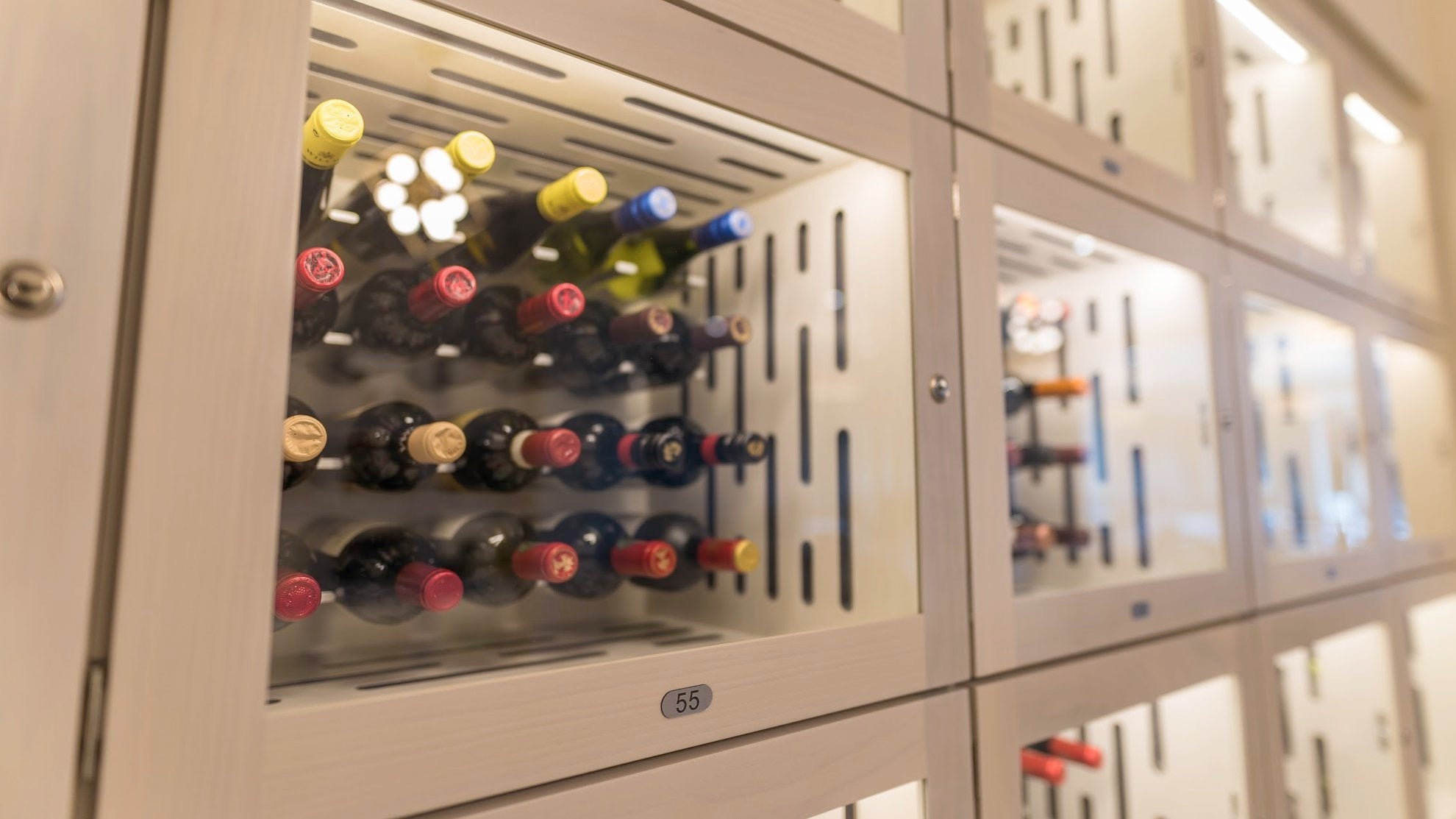 wine locker with glass front