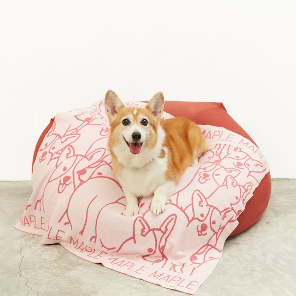 TinyBitz x GG: Personalized Blanket for Corgi