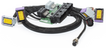 ECUMaster Audi B5 S4 / RS4 PnP adapter for EMU Black