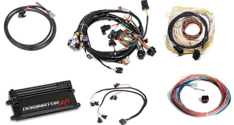 Dominator LS1/LS6 ECU and Harness