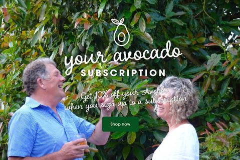 2020 Avobox Avocado Subscriptions