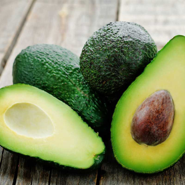 Box of 25 Hass Avocados - Kaimai Block