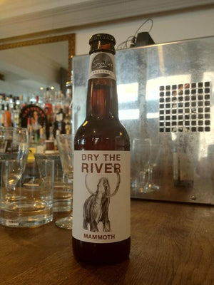 Dry The River - Mammoth