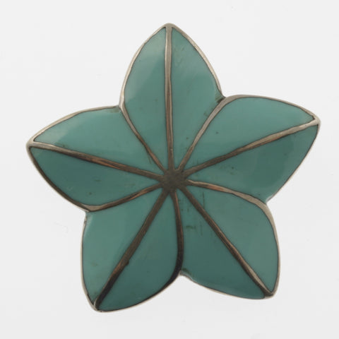 Turquoise star pendant/ brooch