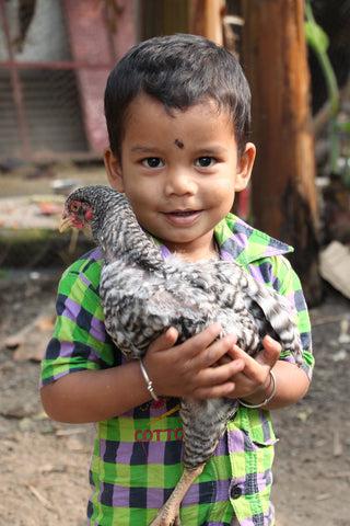 Image of a small indian boy holding a chicken