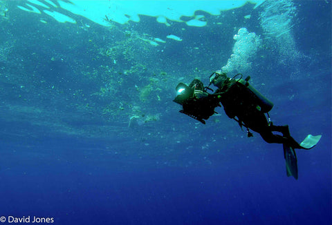 Image of a diver filming pollution in the ocean in Sri Lanka
