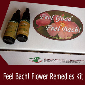 Bach Flower Remedies Kit