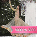 4000 to 6000