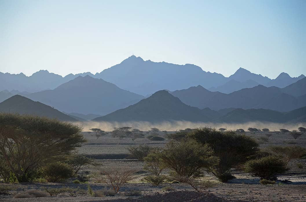 Omani Morning - MONDA Gallery