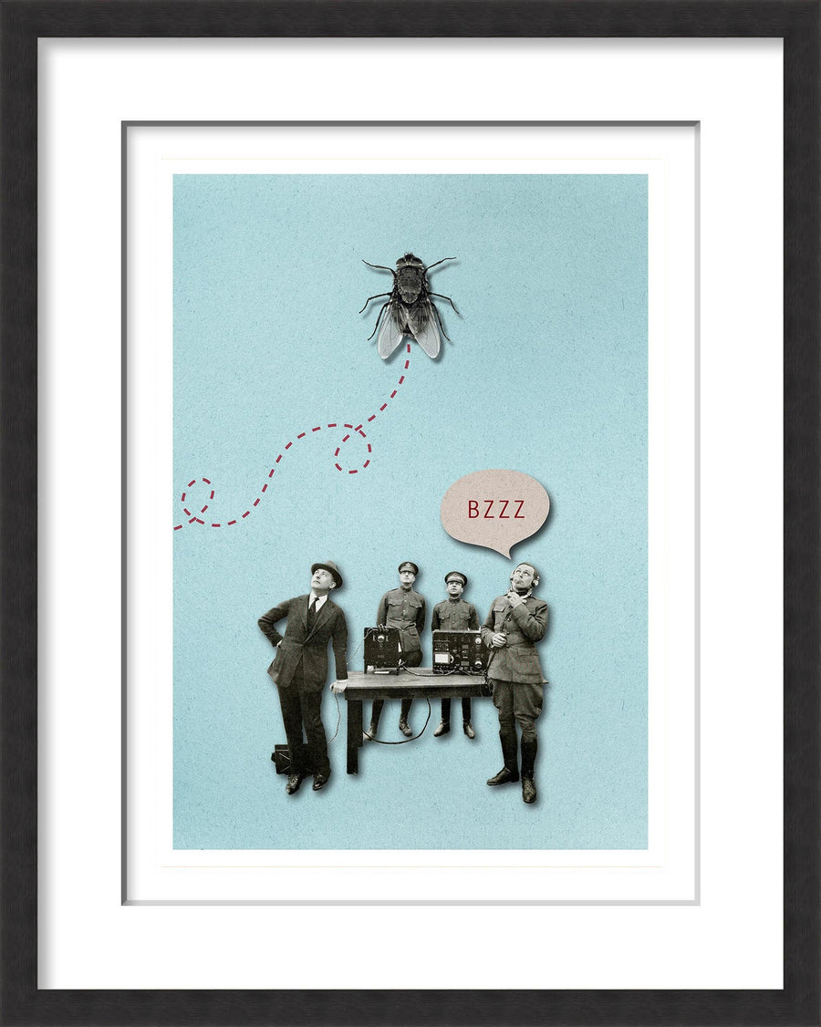 The Fly - MONDA Gallery