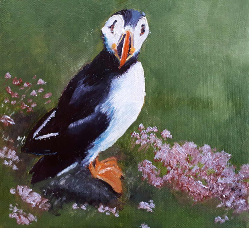 Puffin - Kate Knowles Artist
