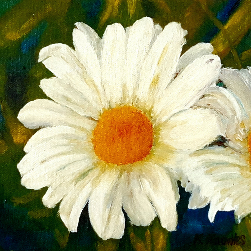 daisy - Kate Knowles Artist
