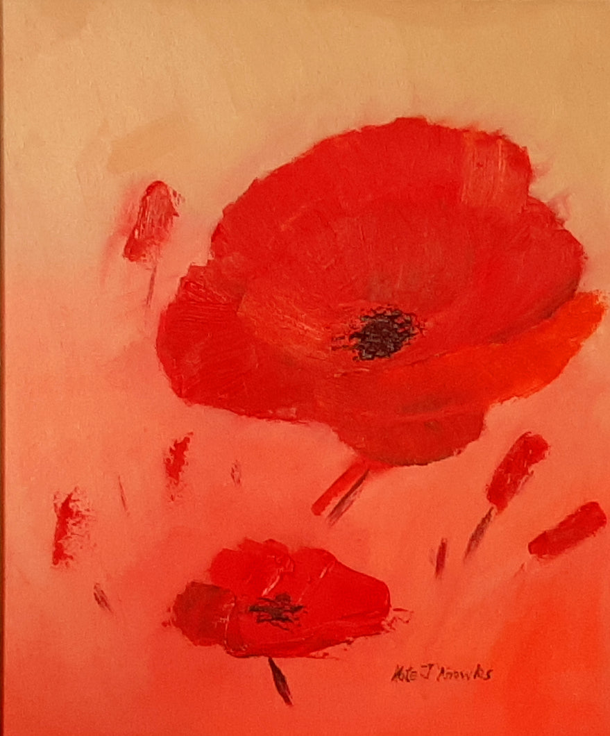 Poppy - Kate Knowles Artist