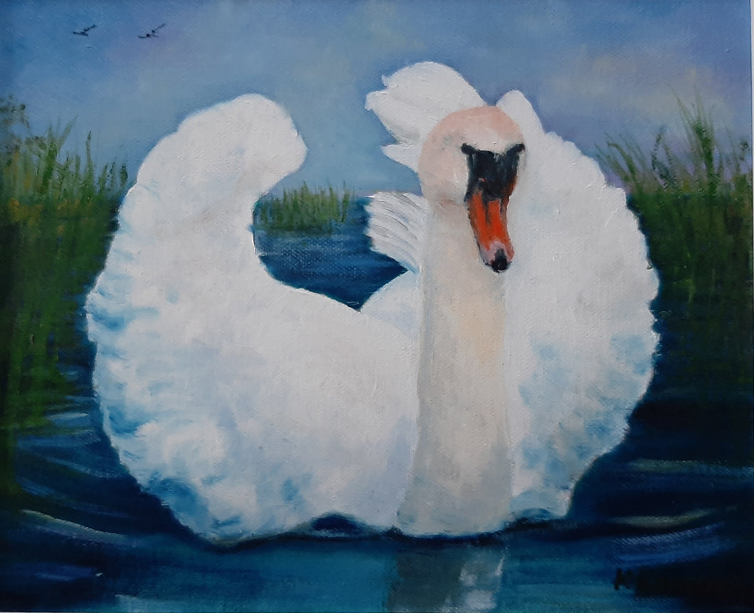 kellyville Swan - Kate Knowles Artist